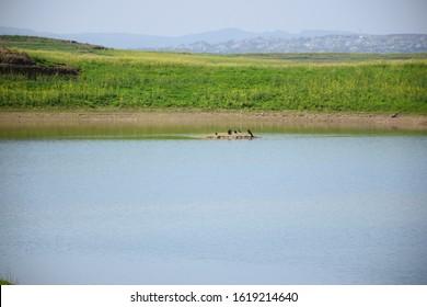 Water sight of diam beautiful environment