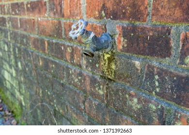Water spigot located on the exterior of a brick home which has been leaking