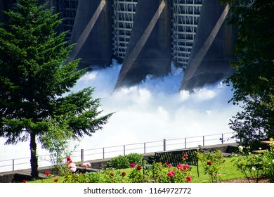Water spills through the turbines of the  Bonneville Dam on the Columbia River in  Oregon