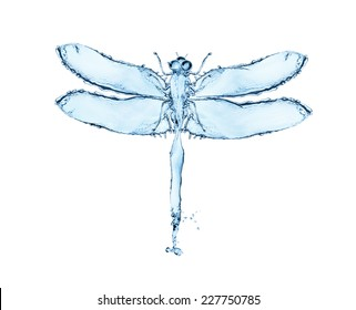 Water splash in the form of a dragonfly, isolated on white