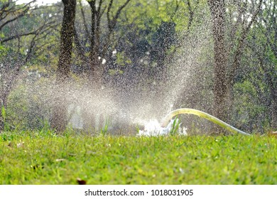 water splashing on the grass plant at the green yard with plastic pipe pouring water on the ground and nature background