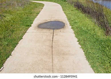 Water Spot on the Walkway