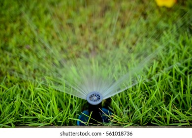Garden Lawn Sprinkler Stock Photos Images Photography