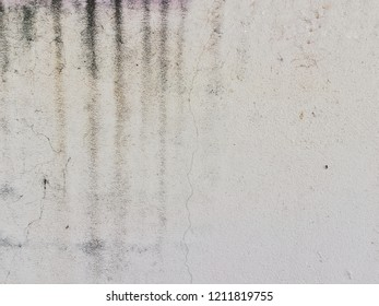 Water stains on white walls.