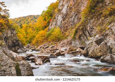 Water stream in Jozamkei, Hokkaido, Japan during fall season and tree color change of leaves.
