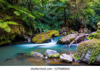 Water Stream in Sao Miguel, Azores
