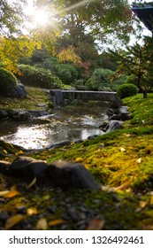 Water stream and stone bridge during autumn foliage in traditional Japanese garden in Kyoto, Japan