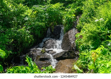 Water Stream at Vitosha mountain
