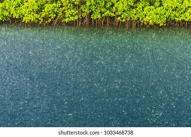water surface with a drops of heavy rain