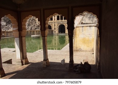 Water tank pool of the Galtaji temple complex, Jaipur, Rajasthan, India
