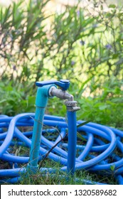Water tap with blue hosepipe ban on grass floor.