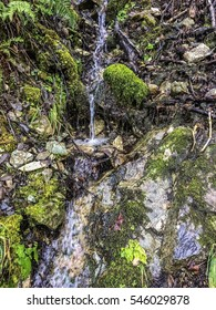 Water trickles down rocky hillside.