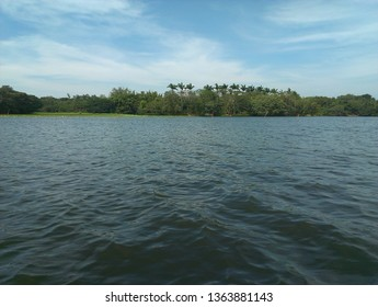 Water view at Karanji kere in Mysore.