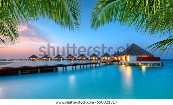 Wasservillen in Lagune, Malediven Resort Insel bei Sonnenuntergang. Detail der Palmenblätter im Vordergrund. Urlaub und Stranderholung, Hintergrund der Sommerferien