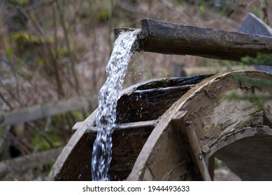 Water wheel in the forest at springtime. Photo taken March 27th, 2021.