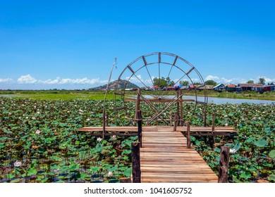 Water wheel in the lake of lotus flowers blooming, Siem Reap, Cambodia