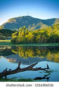 Waterbird looking out over the Ross River, Townsville, with Mount Stuart in the background