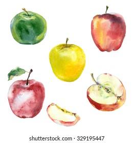 Watercolor apples set