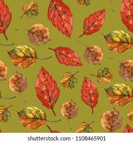 Watercolor autumn leaves. Seamless pattern on green background. Grape, aspen, apple tree leaves