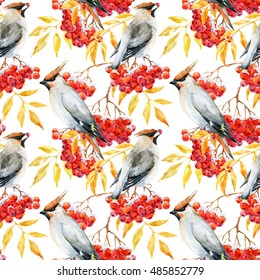 Watercolor autumn pattern with rowan and bird, Waxwing, golden leaves, red berries of mountain ash in snow, white background