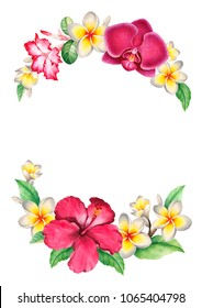Watercolor background. Tropical floral wreath