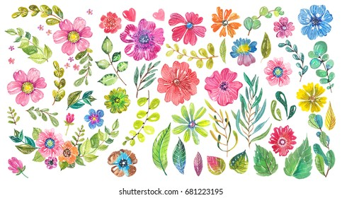Watercolor beautiful floral design. Hand painted floral composition over white background. different kind of branches, flowers and leaves, big collection
