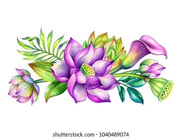 watercolor botanical illustration, tropical floral arrangement, border, exotic flowers, bridal bouquet, garden nature, lotos, calla lily, green leaves, clip art isolated on white background