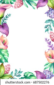 watercolor botanical illustration, wild tropical flowers, jungle green leaves, calla lily, floral frame, blank banner, background, isolated on white background