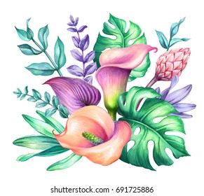 watercolor botanical illustration, wild tropical flowers, jungle green leaves, calla lily, floral bouquet isolated on white background