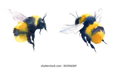 Bumblebee Images Stock Photos Vectors Shutterstock