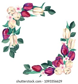 Watercolor Burgundy and Cream Tulips Borders. Elegant marsala and off-white flowers composition of tulips. Floral frame