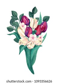 Watercolor Burgundy and Cream Tulips Bouquet. Elegant marsala and off-white flowers composition of tulips.