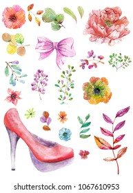 Watercolor collection of nature elements and woman shoe over white