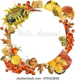 Watercolor colorful autumn wreath  illustration