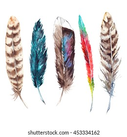 Watercolor colorful exotic bird feather set isolated