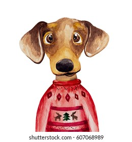 Watercolor Dachshund dog in sweater. 2018 Chinese New Year of the dog. Christmas greeting card