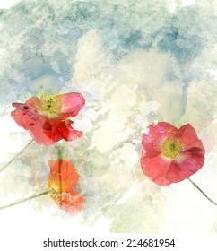 Watercolor Digital Painting Of  Poppy Flowers