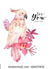 Watercolor drawing of parrot with orchid flower, tropical illustration. Trendy print
