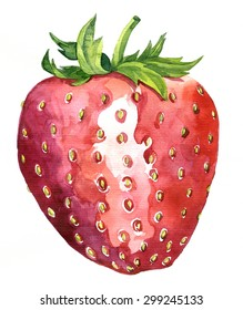 watercolor drawing strawberry, artistic painting berry,hand drawn vector illustration