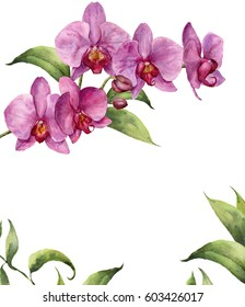 Watercolor floral card with orchids and leaves. Hand painted floral botanical illustration isolated on white background. For design or print