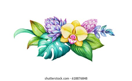 watercolor floral illustration, exotic nature, tropical flowers bouquet, orchid, green leaves, isolated on white background