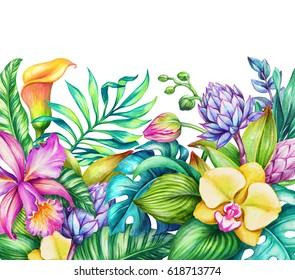 watercolor floral illustration, paradise nature, tropical flowers frame, orchid, hibiscus, calla lily, green palm leaves, wild jungle background