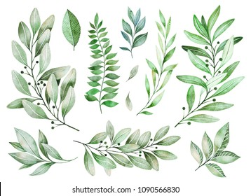 Watercolor greens collection.Texture with greens,branch,leaves,fern leaves,foliage.Perfect for wedding,invitations,greeting cards,quotes,pattern,bouquet,logos,Birthday cards,your unique create etc