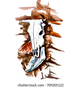 Watercolor Hand Drawn Bull or Cow Skull with Broken Horn, Jaw Boar and Feathers. Native American Indian Tribal Talisman. Halloween Background.