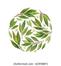 Watercolor hand drawn circular card with green branches and leaves isolated on white background. Organic products for the design of healthy food, kitchen, market, menu, textiles.