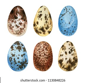 Watercolor hand drawn set of Easter eggs. Colorful collection of different wild birds eggs on a white background