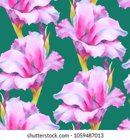 Watercolor hand paint pink gladiolus bud, seamless pattern.