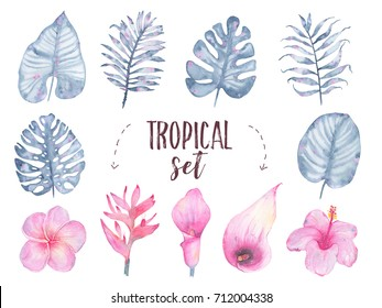 Watercolor hand painted tropical indigo leaf flower frangipani hibiscus calla lily set isolated on white background. Floral illustration. Botanical art