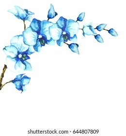 Watercolor handmade isolated bouquet of blue azure orchids and buds.White background.Tropical spring element for invitation postcards felicitations congratulations invitations compliments,wallpapers