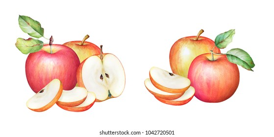 Watercolor illustration of the apples with green leaves isolated on white background. Collection of the apple fruits.